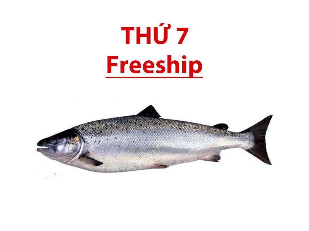 Cá hồi Sapa nguyên con (làm sạch hộ)
