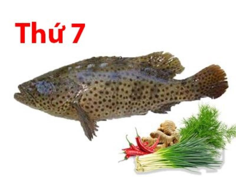 Cá song nguyên con làm sạch từ 3kg - 4kg (Tặng kèm: 50g hành lá, 50g thì là, 30g gừng, 30g ớt kim)