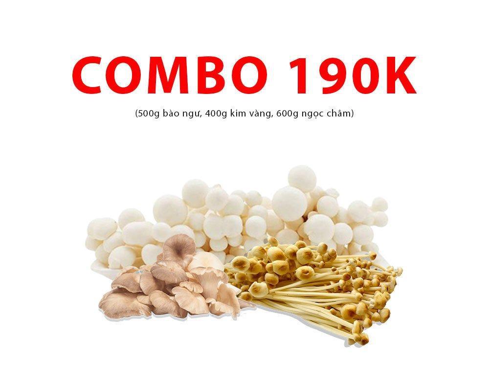 Combo 3 (500g bào ngư, 400g kim vàng, 600g ngọc châm)