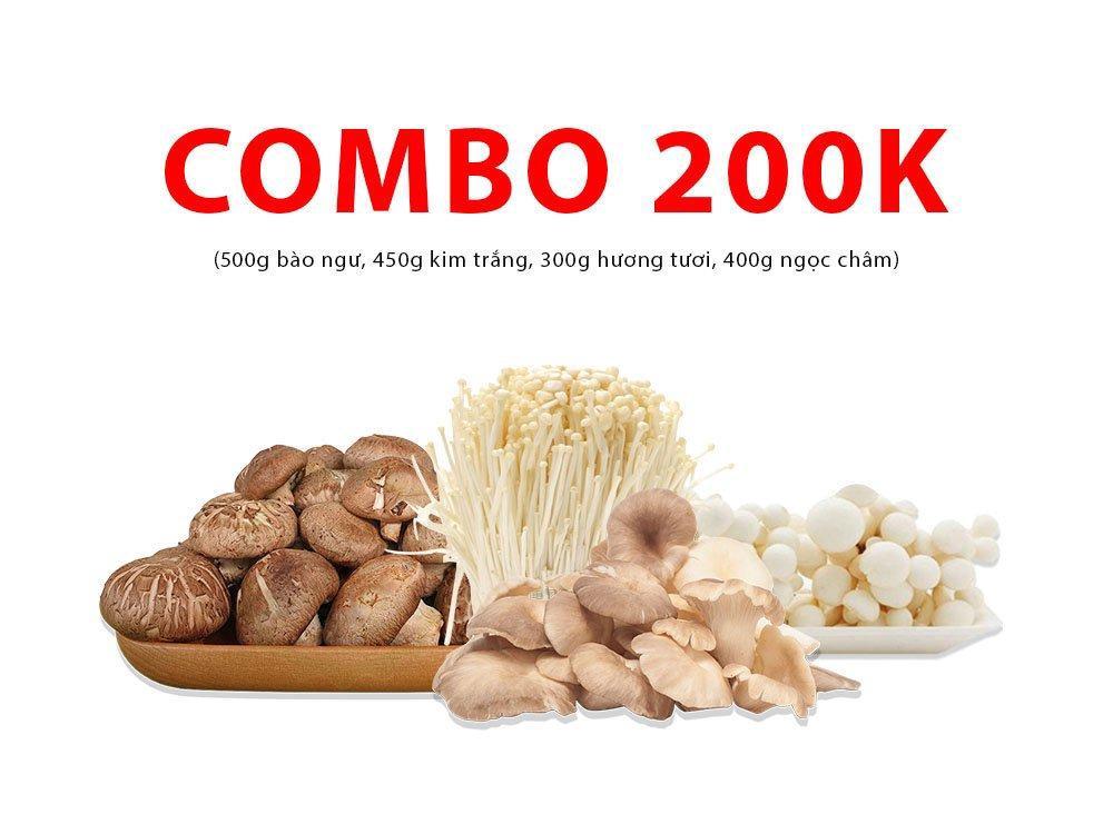 Combo 4 (500g bào ngư, 450g kim trắng, 300g hương tươi, 400g ngọc châm)