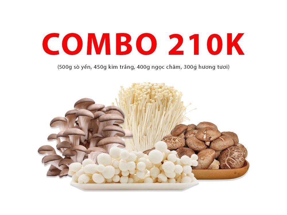 Combo 5 (500g sò yến, 450g kim trắng, 400g ngọc châm,  300g hương tươi)