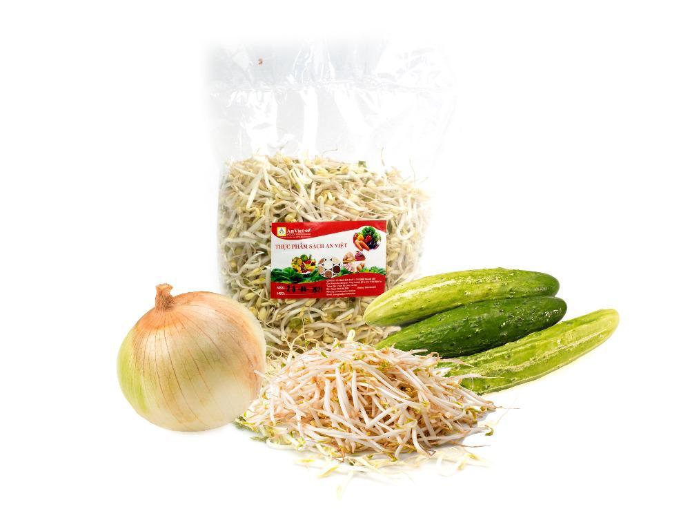 Combo Salad (Giá Đỗ 500g, Hành Tây 1 củ, Dưa Chuột 3 quả)